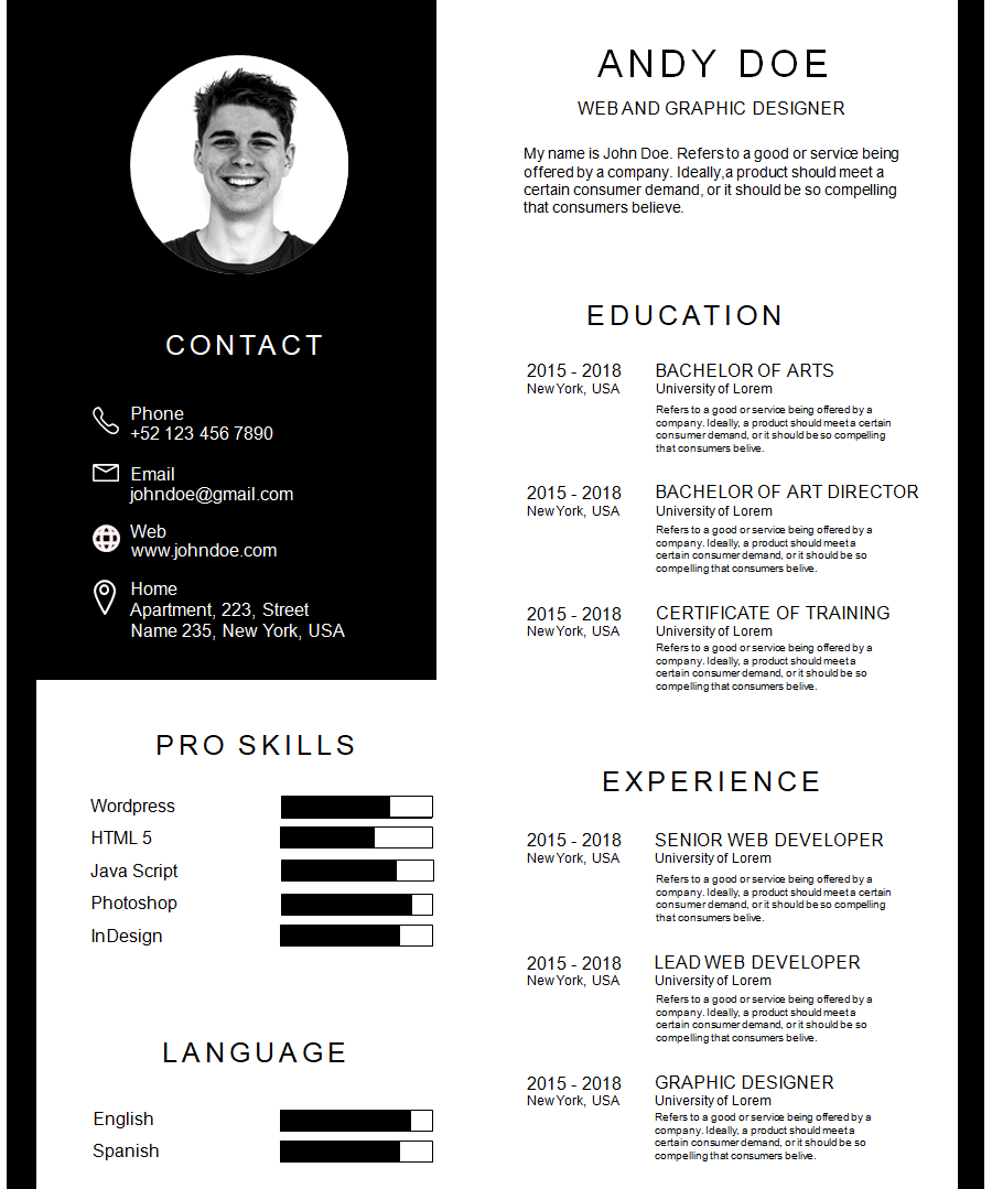 Professional Resume Template 3