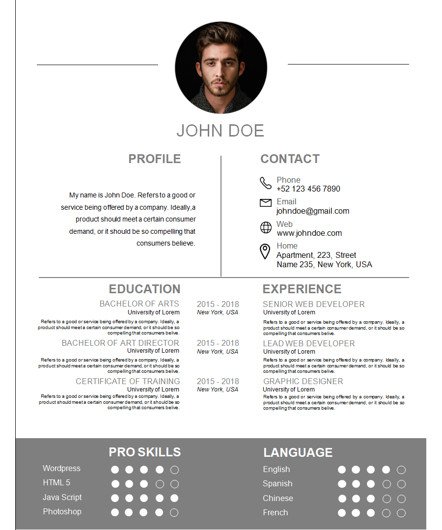 Professional Resume Template 6